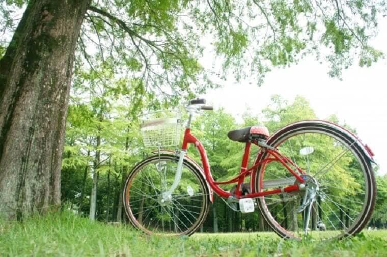 木の下に停められた赤い自転車