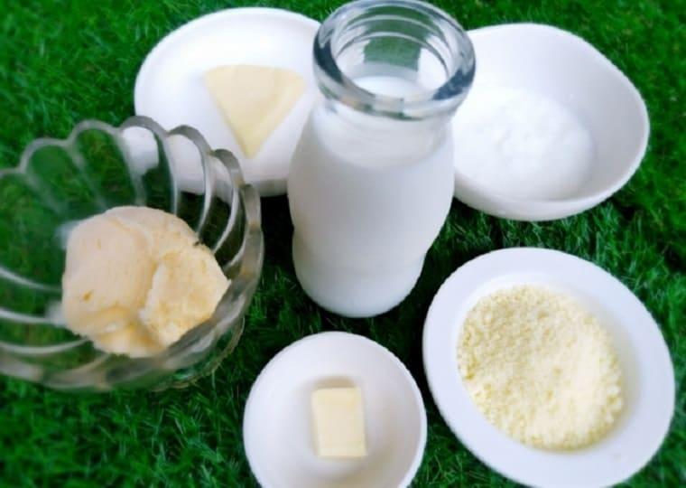 お皿の上に乗せられた牛乳、チーズ、バター、ヨーグルト