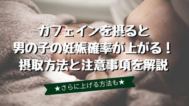 産み分けでカフェインを摂ると男の子の妊娠確率が上がる